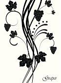 Vector illustration  Grapevine. Vector wine design elements. EPS10