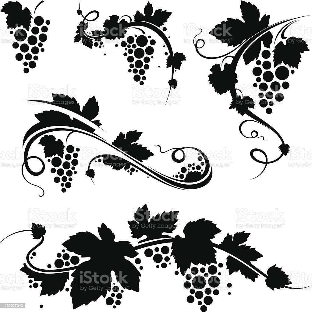 Grapevine/wine symbols - Royaltyfri Alkohol vektorgrafik