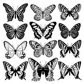 Set of graphic abstract butterflies. Black and white illustration. Trendy images for creating ornaments, fashion design, decoration of interior elements, packaging, summer prints. Vector art. Isolates