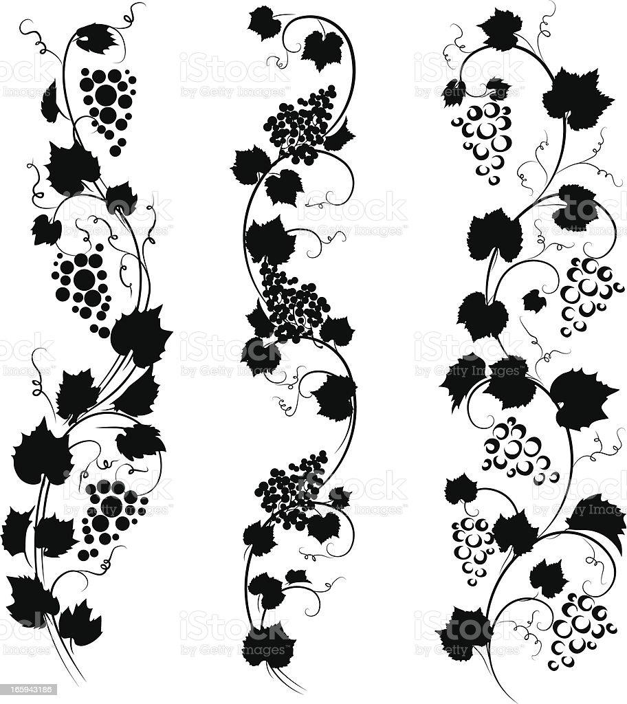 Graphic Black And White Image Of Three Grape Vines Stock ... (912 x 1024 Pixel)