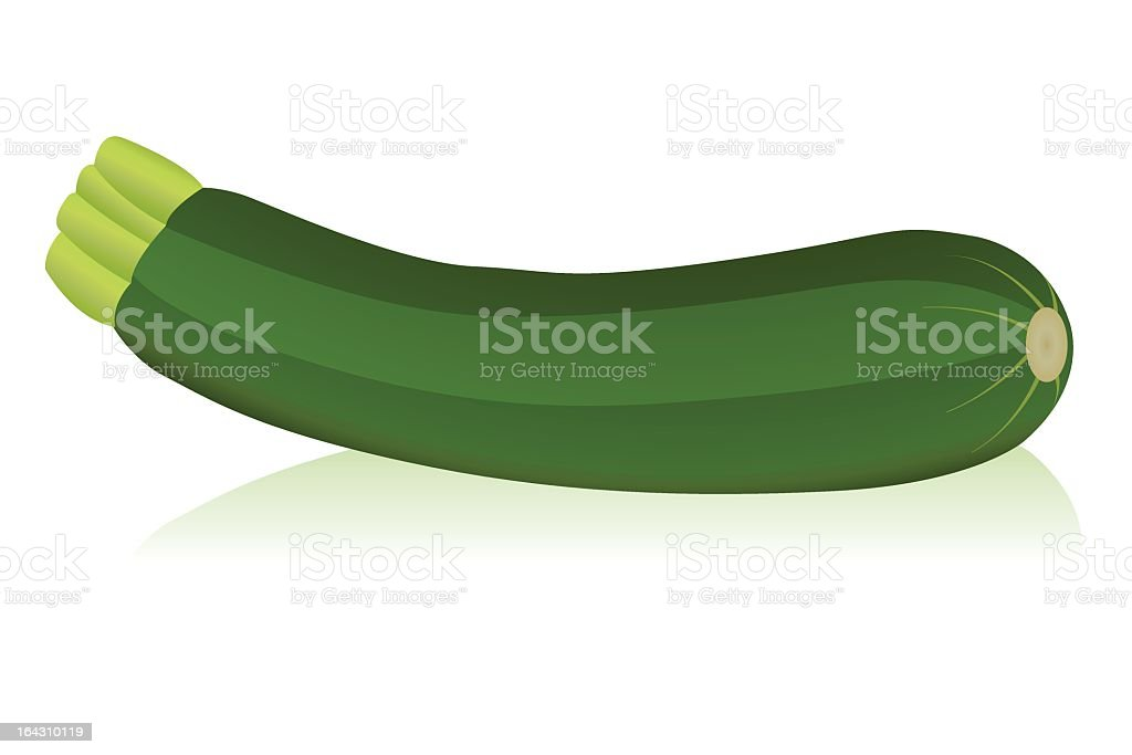 Graphic clip art of zucchini isolated on white background vector art illustration