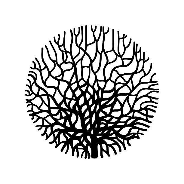 graphic coral circle - algen stock-grafiken, -clipart, -cartoons und -symbole