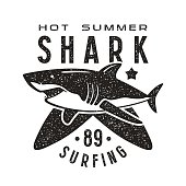 Graphic design for t-shirt with the image of shark
