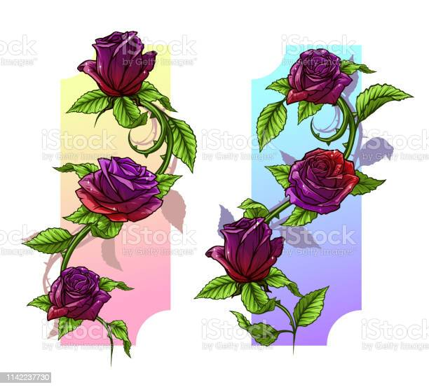 Graphic detailed cartoon roses with stem set vector id1142237730?b=1&k=6&m=1142237730&s=612x612&h=jgau2vwe94bnr7w6jlcz6aqcf5vcb3ftzplaucklqiw=