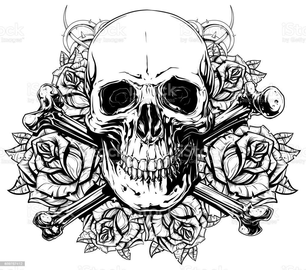Ilustración de Gráfico Humano Cráneo Con Huesos Cruzados Y Rosas y ...