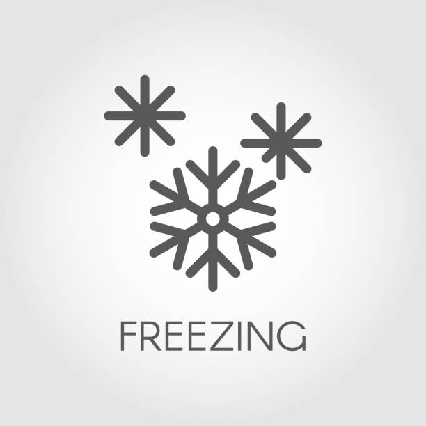 stockillustraties, clipart, cartoons en iconen met grafische pictogram voor snowflake. lijn symbool van bevroren voedselproduct. vectorillustratie - bevroren voedsel
