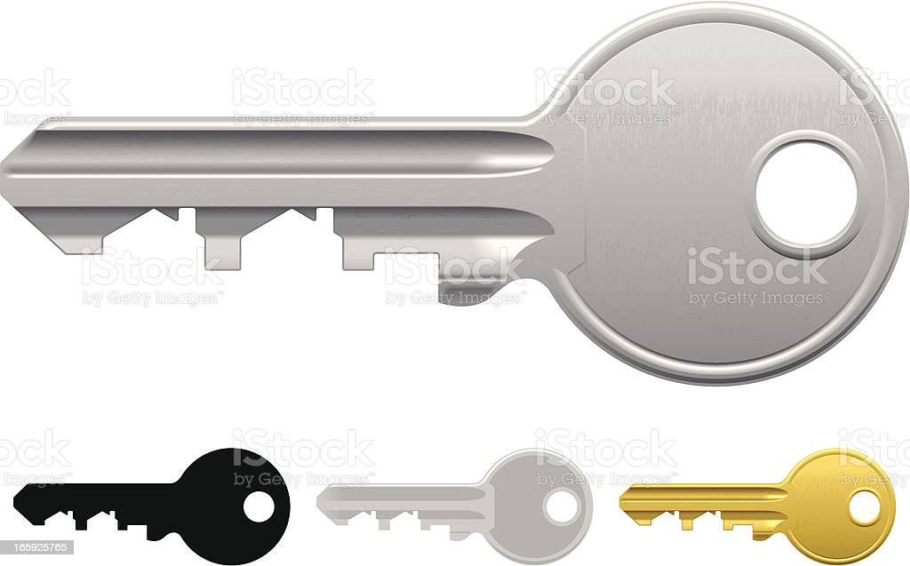 Graphic image of a house key in three different colors vector art illustration