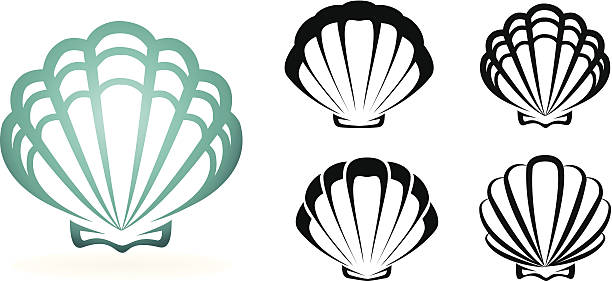 graphic of one large teal shell and four small black shells - seashell stock illustrations, clip art, cartoons, & icons