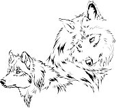 Wolf sketch - tattoo design. High res jpeg and CS2 file included. Based on my sketches.