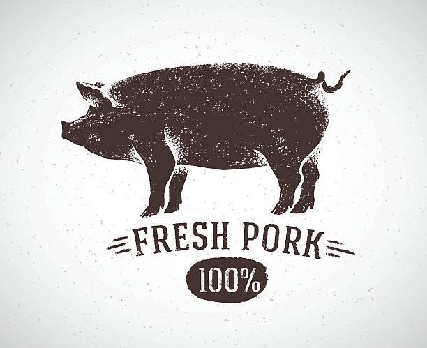 Graphic pig. vector art illustration