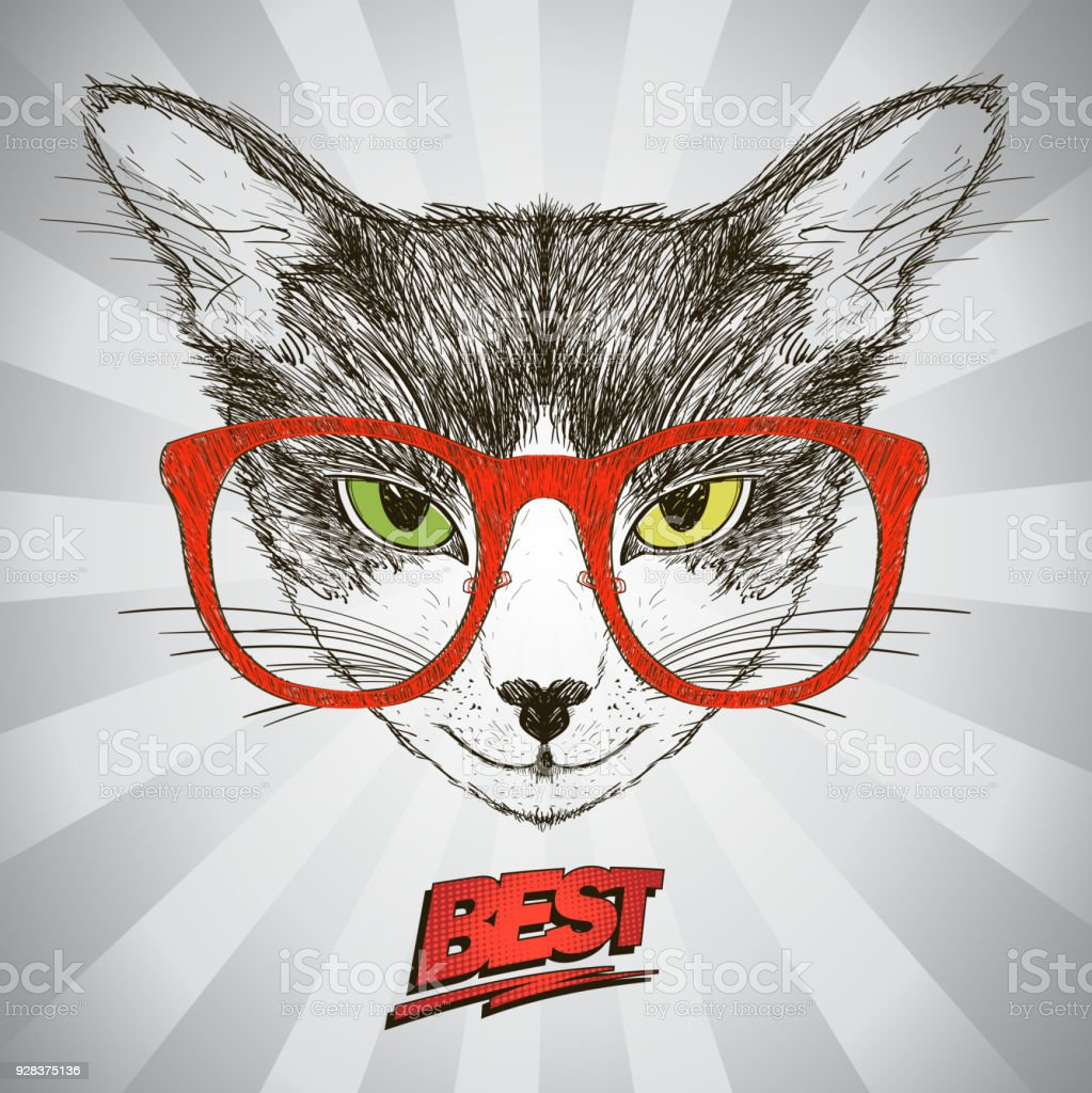 Graphic Poster With Hipster Cat Dressed In Red Glasses Against Pop Art Background