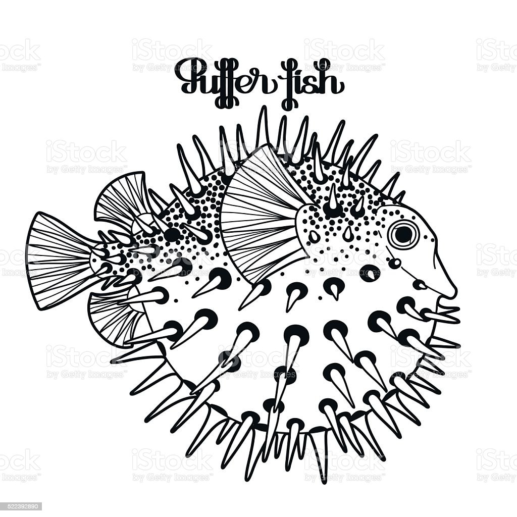 Graphic Puffer Fish Stock Vector Art & More Images of Adult ...