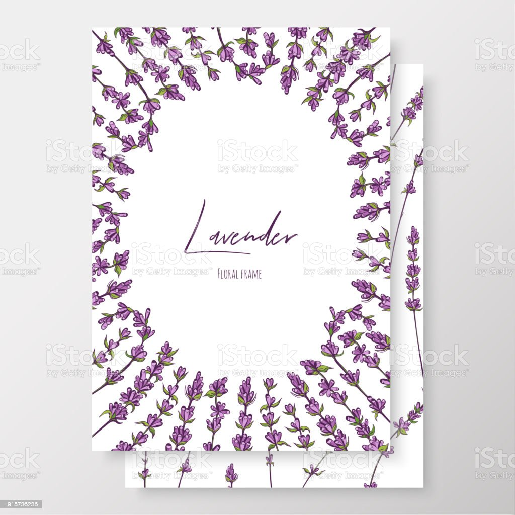 Graphic Purple Cards With Lavenders Linear Vector Leaves For Your