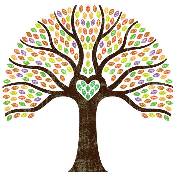 illustrations, cliparts, dessins animés et icônes de illustration d'arbre graphique petit coeur - arbres généalogiques