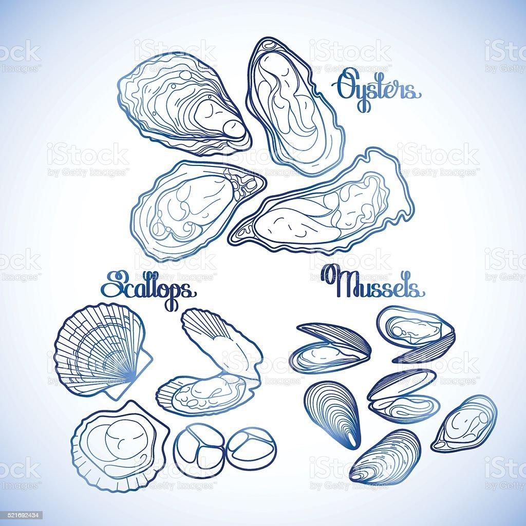 Ilustración De Gráfico Vector De Mejillones Ostras Y Vieiras
