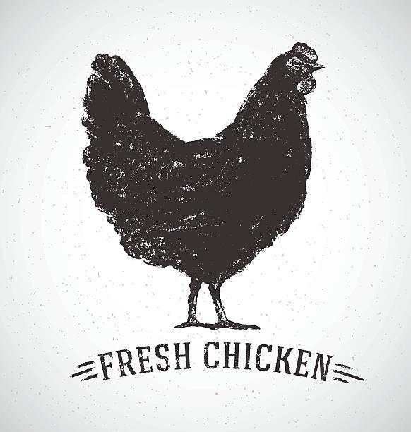 bildbanksillustrationer, clip art samt tecknat material och ikoner med graphical chicken. - höna
