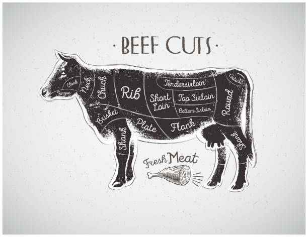 Graphical cow Graphic silhouette cow with the line of cutting for the butcher. beef stock illustrations