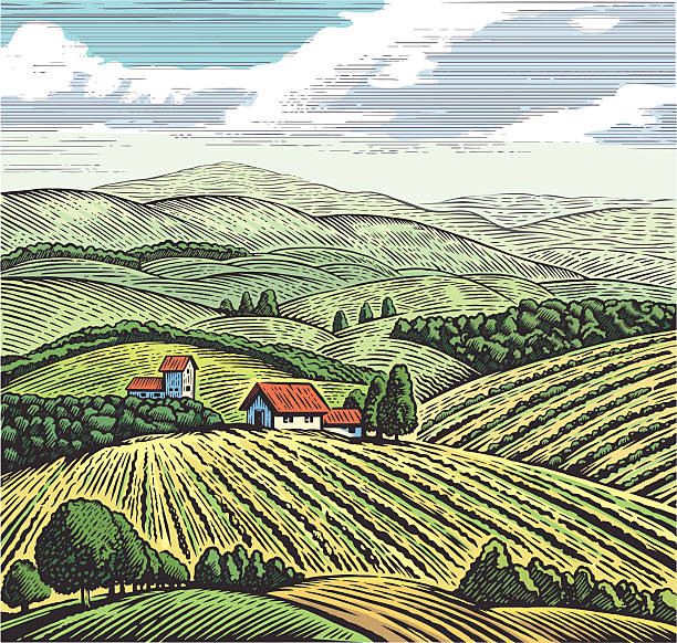 Graphical rural landscape Rural landscape in graphic style, hand drawn and converted to vector Illustration. organic farm stock illustrations