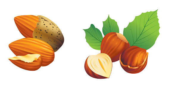 Graphics of nuts being cracked open