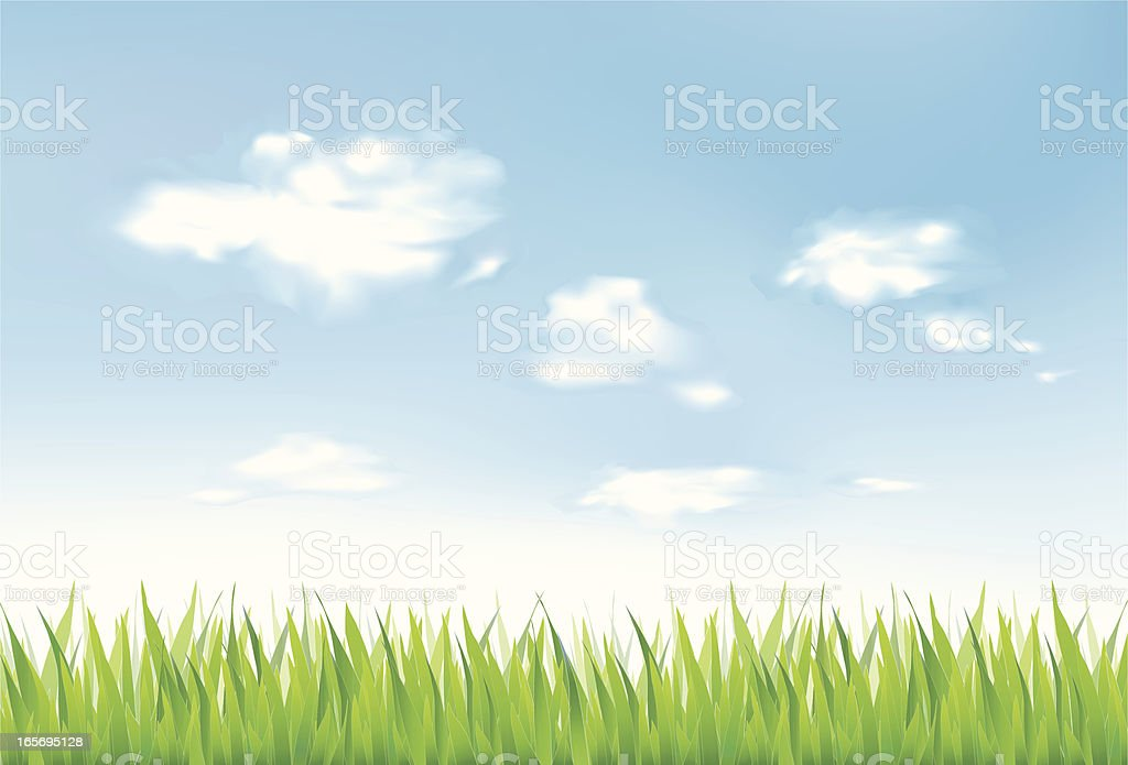 Grass and clouds royalty-free stock vector art