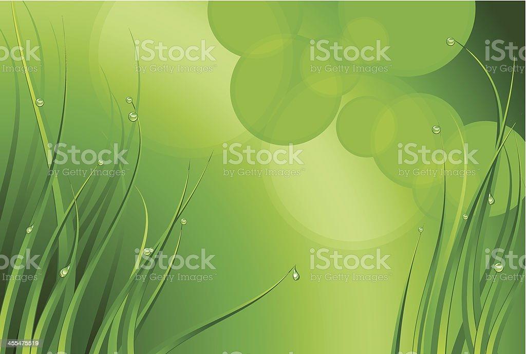 Grass and drops royalty-free stock vector art
