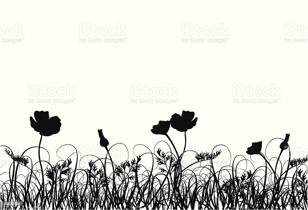 Grass and poppy royalty-free stock vector art