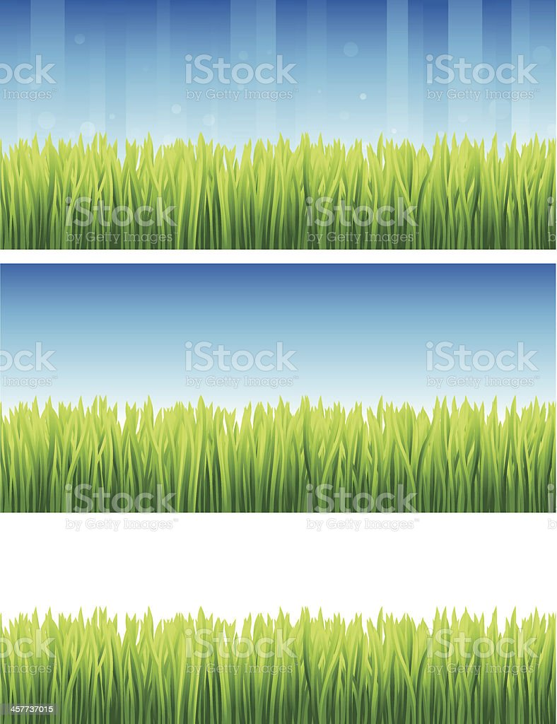Grass Backgrounds royalty-free stock vector art