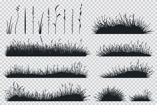 Grass black silhouette vector set.