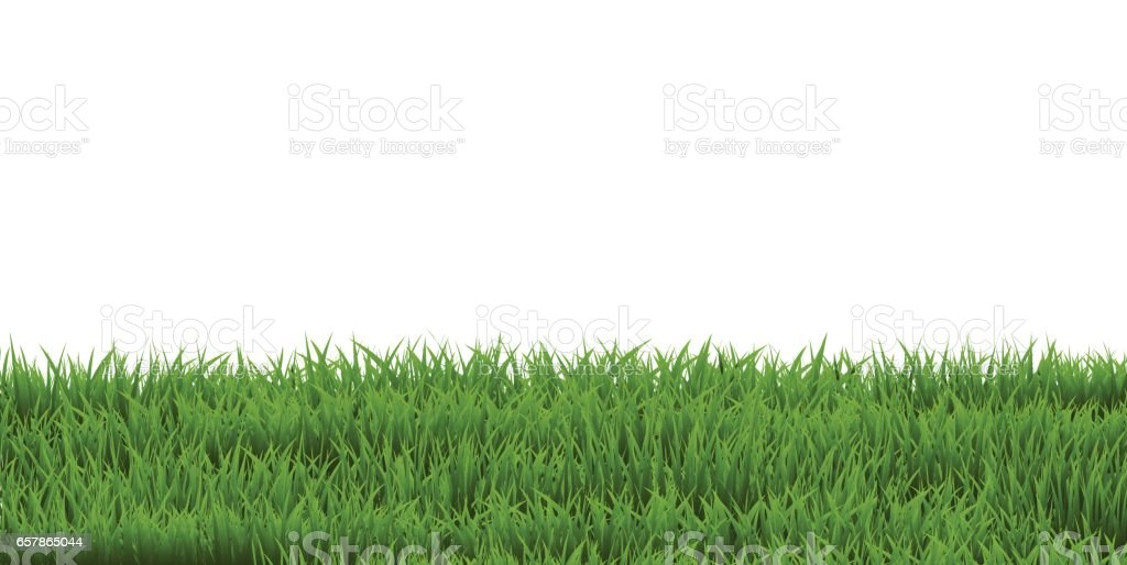 Grass Border vector art illustration