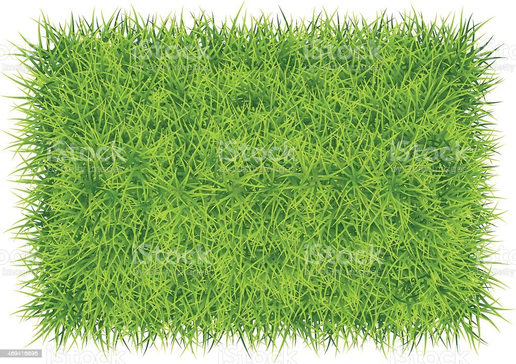 Grass carpet background vector art illustration