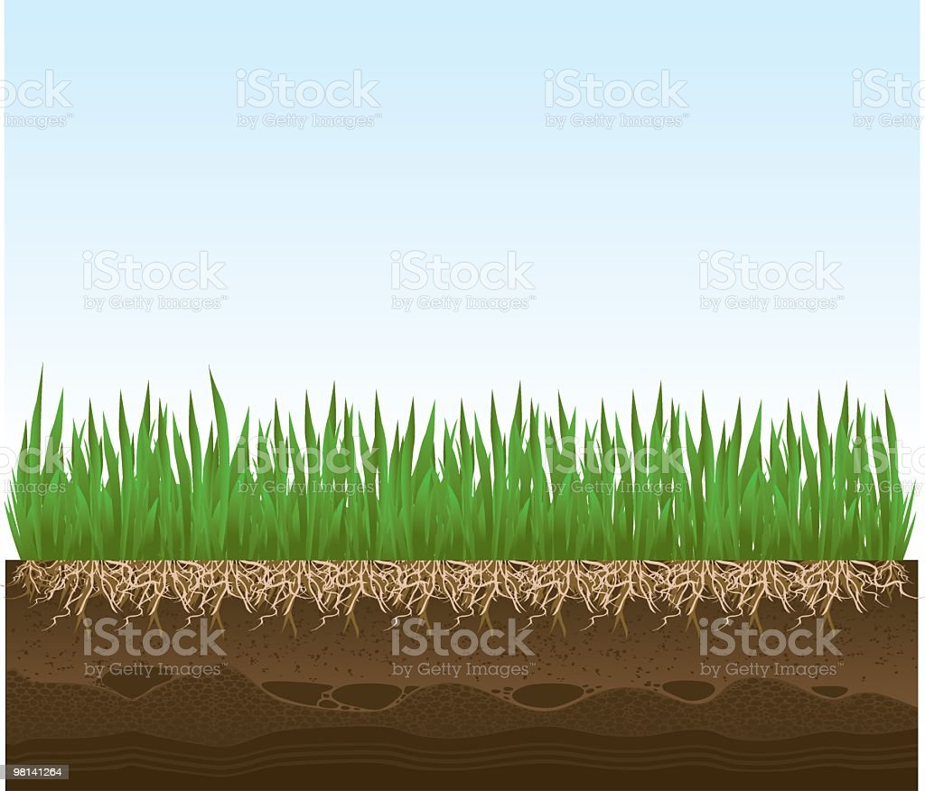 Grass Detail with Roots and Dirt royalty-free grass detail with roots and dirt stock vector art & more images of blue