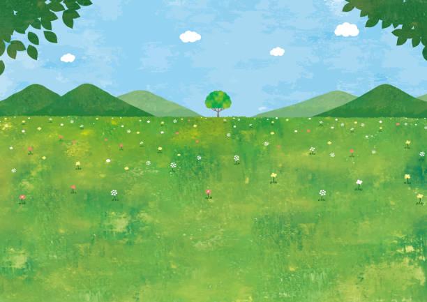 草原と大きな木 - 草原点のイラスト素材/クリップアート素材/マンガ素材/アイコン素材