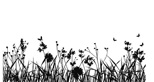 illustrations, cliparts, dessins animés et icônes de grass field avec silhouette de papillon - prairie