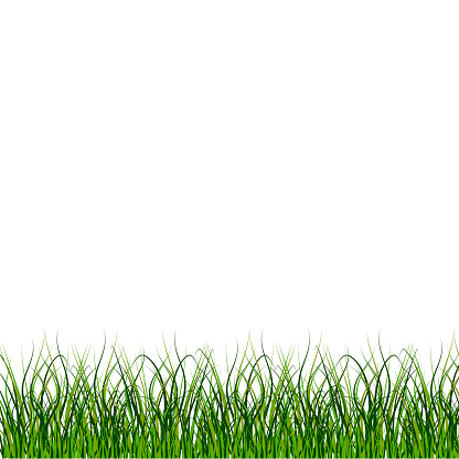 Grass, great design for any purposes. Nature background vector. Stock image. EPS 10.