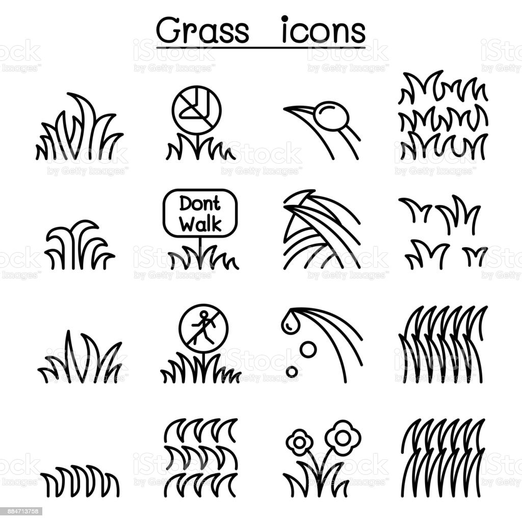 Grass icon set in thin line style vector art illustration