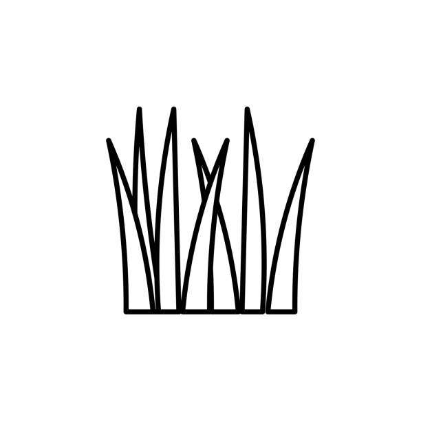 grass icon vector art illustration