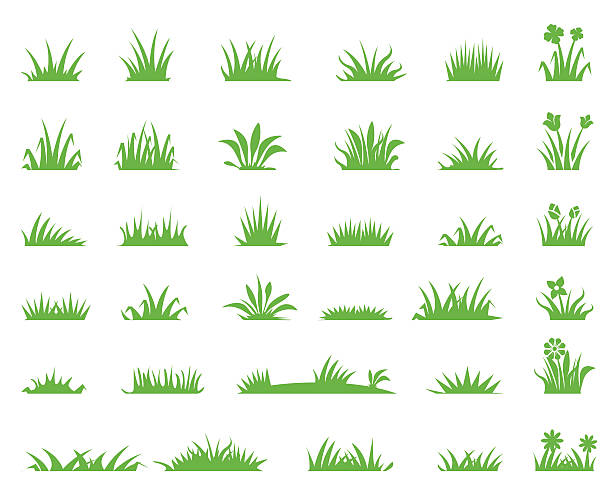 illustrations, cliparts, dessins animés et icônes de grass icons - prairie