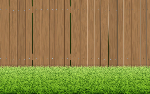 Grass lawn and brown wooden fence.