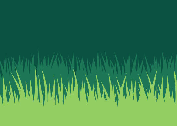 grass lawn background - grass stock illustrations