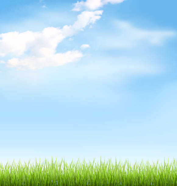 芝生の上の青い空に雲 - 草原点のイラスト素材/クリップアート素材/マンガ素材/アイコン素材