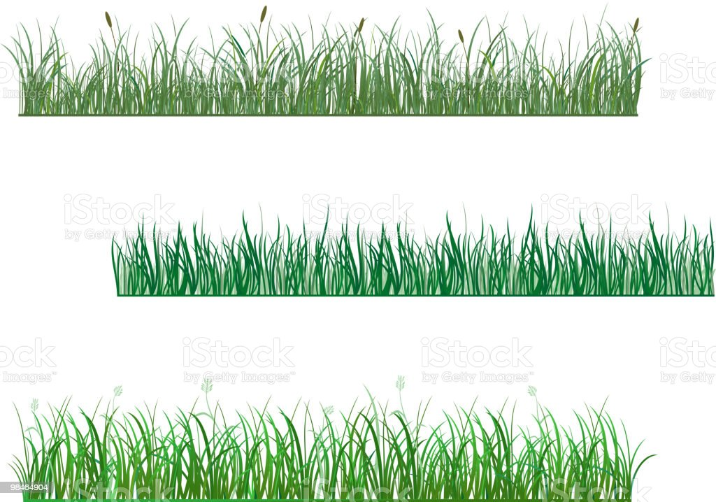 Grass patterns royalty-free grass patterns stock vector art & more images of color image