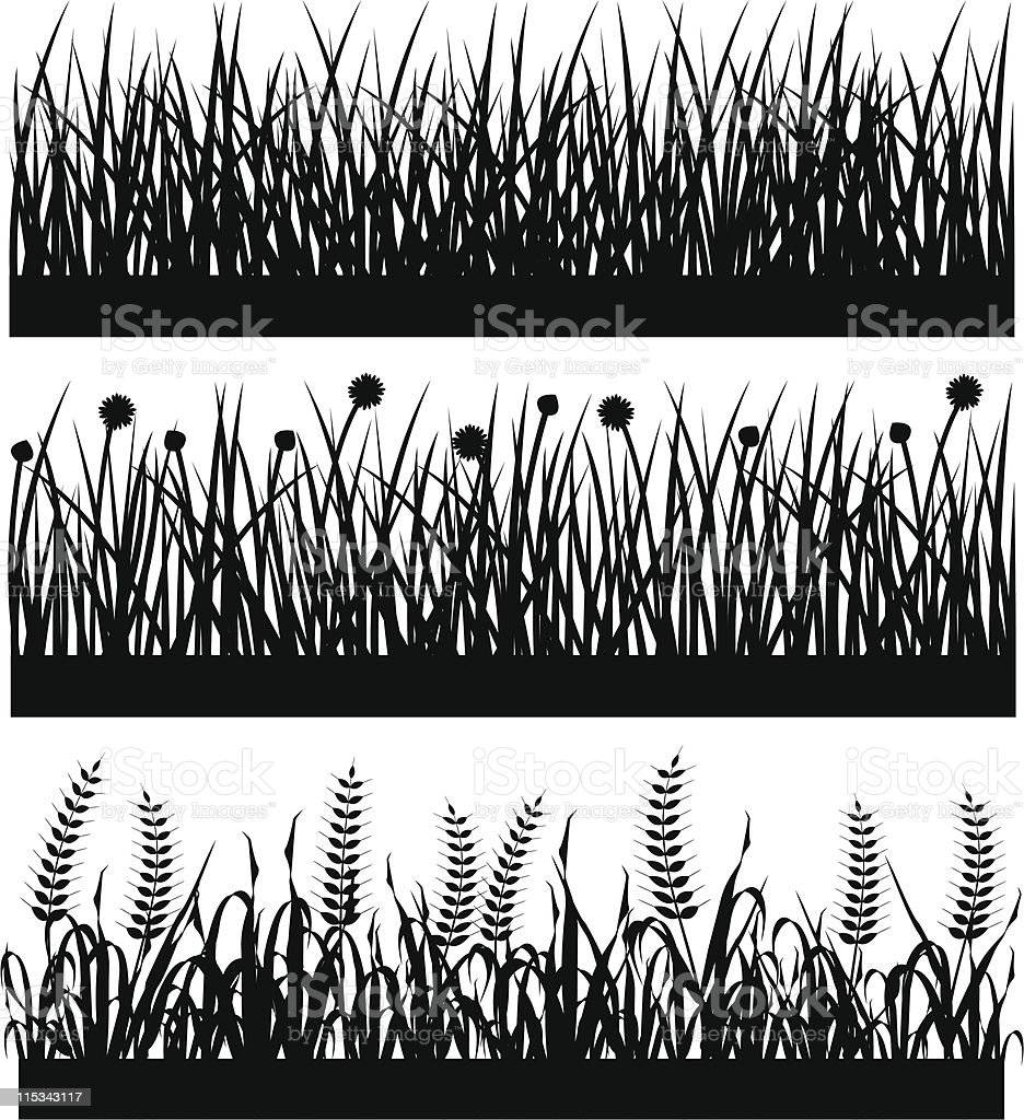 Grass Plant Flower Silhouette vector art illustration