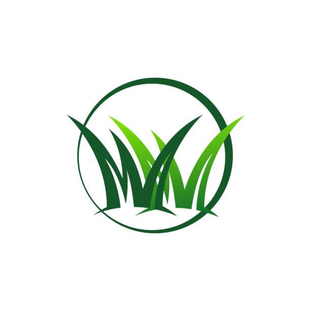 ilustraciones, imágenes clip art, dibujos animados e iconos de stock de cortacésped removedor de hierba logotipo diseño plantilla de vector de ilustración vectorial - backyard