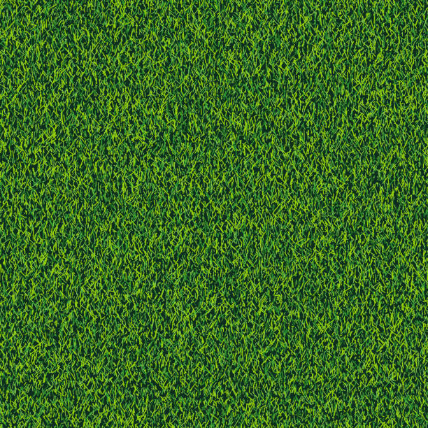 Grass seamless realistic texture. Green lawn, field or meadow vector background. Summer or spring nature illustration Grass seamless realistic texture. Green lawn, field or meadow vector background. Summer or spring nature illustration. turf stock illustrations
