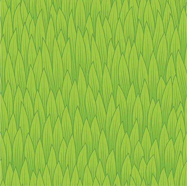 Grass - seamless texture vector art illustration