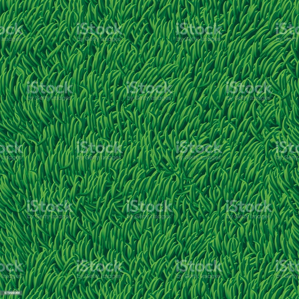 Grass - seamless (high detail) royalty-free grass seamless stock vector art & more images of american football field