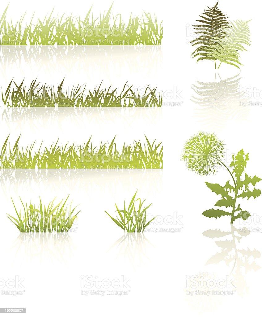 Grass set royalty-free stock vector art