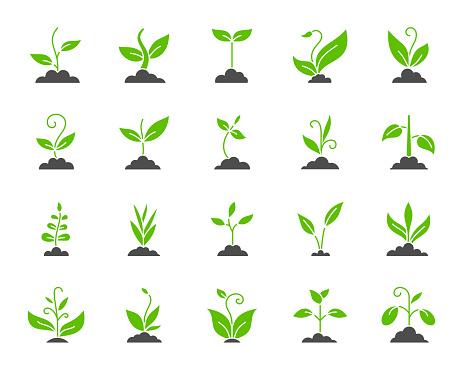 Grass silhouette icons set. Isolated on white web sign kit of bio plant. Sprout pictogram collection includes flower, gardening, ecology. Simple green grass contour symbol. Vector Icon shape for stamp
