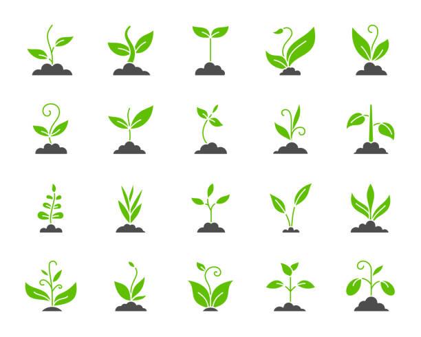 illustrazioni stock, clip art, cartoni animati e icone di tendenza di grass simple color flat icons vector set - erba medica