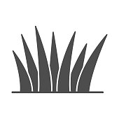 Grass solid icon, nature concept, lawn sign on white background, Grass leaves icon in glyph style for mobile concept and web design. Vector graphics